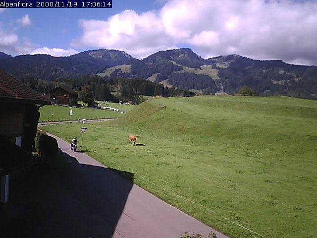Webcam Fischen im Allgäu - West-Blick direkt von unserem Haus auf die Gipfel der Hörnergruppe - Fischen ist kurz vor Oberstdorf